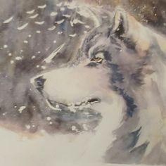 Wolf. Watercolour.