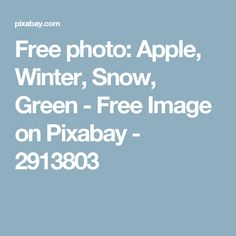 Free photo: Apple, Winter, Snow, Green - Free Image on Pixabay - 2913803
