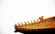 This can be found on rooftops of Forbidden City, Emperors sure know how to keep pets happy. Which one u like?