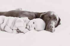sweet baby and dog photo