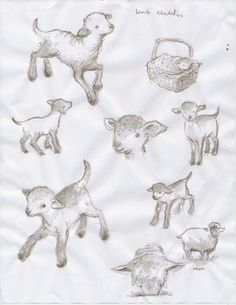 lamb sketches images | paperwork: February 2012