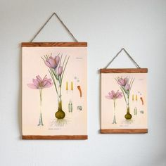 Who doesn't love saffron? This poster makes for a great  christmas gift!
