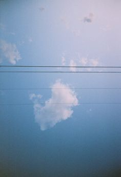 blue skies and power lines  - film photography by Hannah Brock (Richmond, VA)