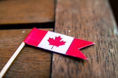 Get out your toques, hockey sticks, and grab a double-double for the road. July is Canada Day and we couldn't be more excited! Check out this quick read for cute and quirky facts about Canada that we know the whole family will enjoy! Canada Day Flag, Canada Day Party, O Canada, Cupcake Flags, Cupcake Cakes, Cupcakes, Canadian Party, Facts About Canada, Canada Day Crafts