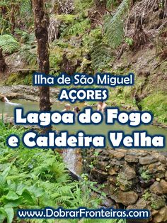 Lagoa do Fogo e Caldeira Velha - AÇORES #acores #viagem #natureza Trekking, Stuff To Do, Things To Do, Parque Natural, Azores, Atlantic Ocean, Best Hotels, Trip Planning, Places To See