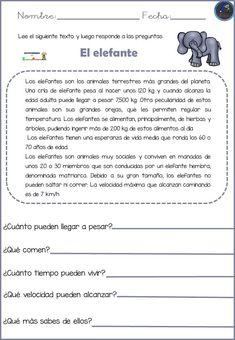 Comprensión Lectora conocemos los animales - Imagenes Educativas Spanish Classroom Activities, Spanish Teaching Resources, Preschool Education, Spanish Language Learning, Free Spanish Lessons, Spanish Lesson Plans, Classroom Humor, Classroom Language, Spanish Worksheets