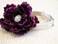 Eggplant Wedding Dog Collars  High Quality Leather by LADogStore, $43.50. Love the flower
