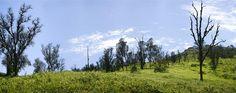 Acabo de compartir la foto de Edgar Asencios Miranda que representa a: Lomas de Lachay