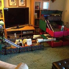 "Love the inter-cage tube travel idea: ""the piggies fly through the tubes between their living room and kitchen all day long"". By Bonnie RH, posted to the Guinea Gang fb page."