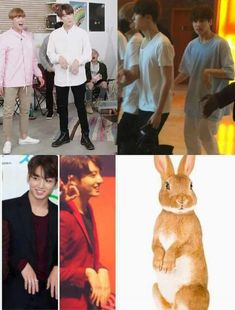 There's no doubt he a bunny