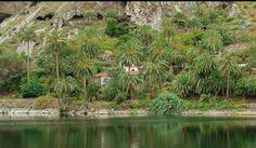 Vallehermoso, Isla de La Gomera, ( Canary Island ).