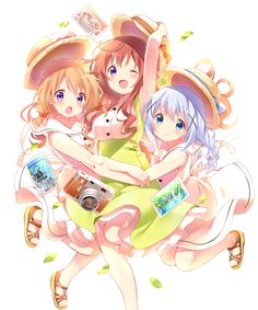 Cocoa, Mocha, Chino, Is the order a rabbit?