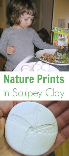 Making nature prints in Sculpey or other clay is a fun printmaking activity for children and captures a surprising amount of detail from leaves and flowers. Nature Activities, Fun Activities For Kids, Creative Activities, Creative Kids, Projects For Kids, Crafts For Kids, Kindergarten, Nature Prints, Camping Crafts
