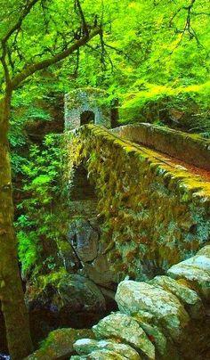 Antiguo puente de piedra. Perthshire, Escocia