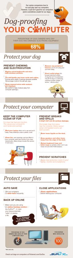 This infographic will provide you with some very simple tips for protecting your dog, protecting your computer and protecting your files from all canine-related catastrophes...