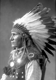 Louie. Chief Sitting Bull's son. Hunkpapa Lakota. 1880s.