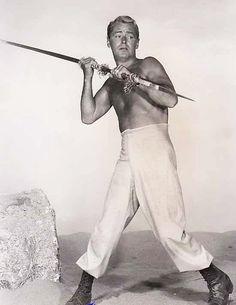 Alan Ladd in Shane (1953)