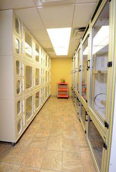 Veterinary Medical Center of St. Lucie County | Hospital Design