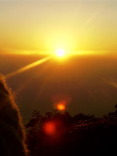 #magiaswiat #podróż #zwiedzanie # dardżyling #blog #azja #katedra #indie #pałac #ogrody #zabytki #swiatynia #stupa #kolejka #pociag #mahakala #tigerhill #wschod #słońce #yigachoeling #monastery #miasto #drukthuptensangag # cholingmonastery #himalaje Indie, Celestial, Sunset, Blog, Outdoor, Outdoors, Blogging, Sunsets, Outdoor Games