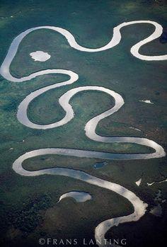 Okavango river meanders (aerial), Okavango, Botswana, Frans Lanting