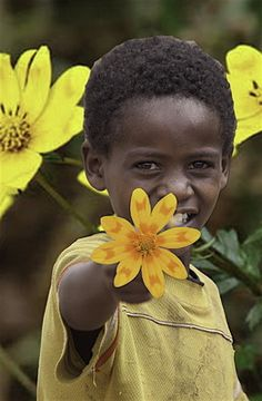 Rastafari - Religious Holidays Small Yellow Flowers, New Year Card, Holiday Festival, Livestock, People Around The World, Ethiopia, Science, Culture, Fish