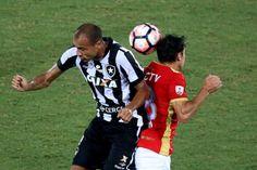 BotafogoDePrimeira: 'Temido', Roger, força física... Botafogo é respei...