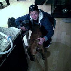"Vladimir Tarasenko @ tara9191 via Twitter:  ""@CstewSTL25 chilling with BigStewCat dogs."""