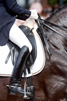 because it's all about dressage.