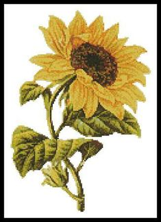 Everything Cross Stitch - Golden Sunflower