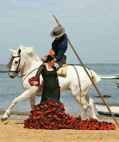 Horse Girl Photography, Dance Photography, Spanish Heritage, Dancing Drawings, Spanish Dancer, Le Polo, Human Art, Dance The Night Away, Beautiful Horses