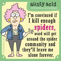 Aunty Acid: ... if I kill enough spiders, word will get around the spider community and they'll leave me alone forever.