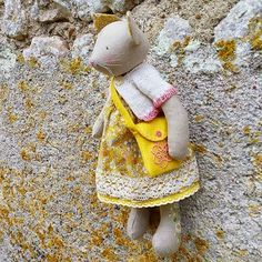 Miss Primrose Kitten climbed up the wall to gather some yellow lichen in her bag and now she's afraid to climb back down...