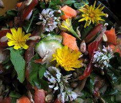 Dieser Salat ist wirklich schnell zubereitet (unter 5 min) und vielleicht eher was als Beilage, denn als Hauptgericht, und natürlich lecker. Zutaten: 1 Handvoll gemischt Löwenzahn und Knoblauchsrau...