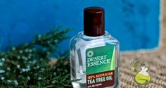 Tea Tree Oil for Warts Removal: Will it Help? - Oilypedia.com