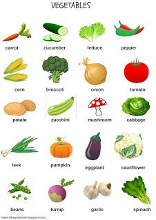 vegetables picture dictionary