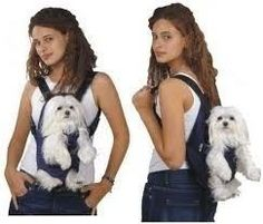 Mochila Para Transporte De Cães Em Motos Transport Cachorros - R$ 79,90
