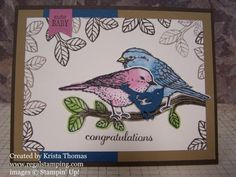 Stampin\' Up! Best Birds Bundle by Krista Thomas, www.regalstamping...