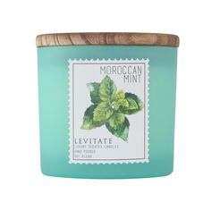 2 Wick Candle Candle In The Wind, Frosted Glass, Scented Candles, Moroccan, Wicked, Wax, Essential Oils, Mint, Holiday