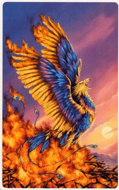 Phoenix Cards by toni-taylor on DeviantArt -This image was used as the card~back of The Phoenix Card deck, a divination tool/oracle aiding in recognition of past lives.