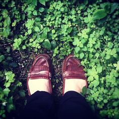 #fromwhereistand #greenhouse  #instagram