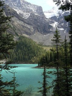 """100 places to visit in Canada """"Moraine Lake in Banff National Park"""" Places To Travel, Places To See, Canada Summer, Visit Canada, Banff, Canada Travel, Adventure Is Out There, Places Around The World, The Great Outdoors"""