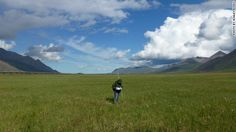 Researcher Shannan Swett working in the Alaskan tundra in summer. Natalie Boelman says thawing of the tundra could release vast amounts of carbon dioxide and methane into the atmosphere.