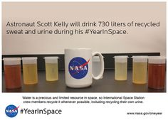 Last week, NASA astronaut Scotty Kelly embarked on a historic mission: He plans to spend the next 361 days on the International Space Station. Scott Kelly, Nasa Missions, Nasa Astronauts, International Space Station, Marine Biology, Space Exploration, Science Nature, Astronomy, Physics