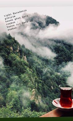 Aikido, Niagara Falls, Karma, Islam, Istanbul, Words, Quotes, Life, Outdoor