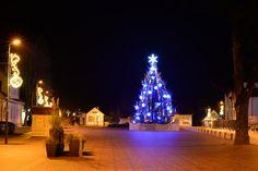 Birštono miesto aikštė Kalėdinė eglutė // Christmas tree in Birstonas