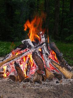 ♪♪ Fires burning, fires burning, draw nearer ♪♪ Fire Crafts, Fire And Desire, Colors Of Fire, Fire Image, Camping Humor, Bonfires, Light My Fire, Go Outside, Outdoor Camping