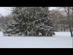 14 inches of snow hit midwest