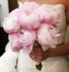 {The Classy Woman}: The Modern Guide to Becoming a More Classy Woman: Pining For Peonies