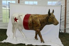 Cowlifornia Republic Artist: Amy McKay Sponsors: RRM Design Group and Terre Verde Environmental CowParade SLO
