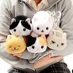 A collection of tiny cats for the cat ladies who for some reason can't have a REAL cat.